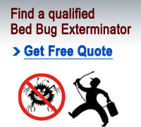 Bed Bug Exterminators